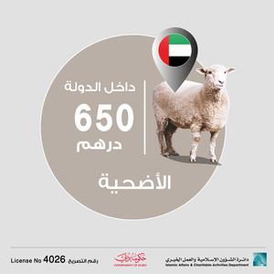 Drivu أضحية داخل الدولة - Sacrificial Animals inside UAE