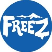 Logo freezzlogo copy