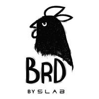 Logo brdlogo